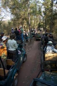 India2012-640x640px 153