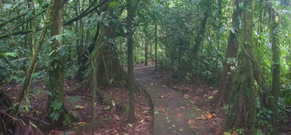 Costa Rica -  057