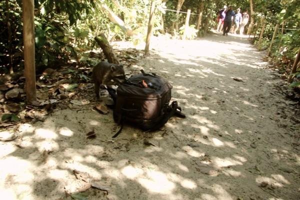 Costa Rica -  144