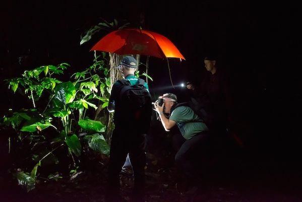 Costa Rica - Bart Siebelink 053