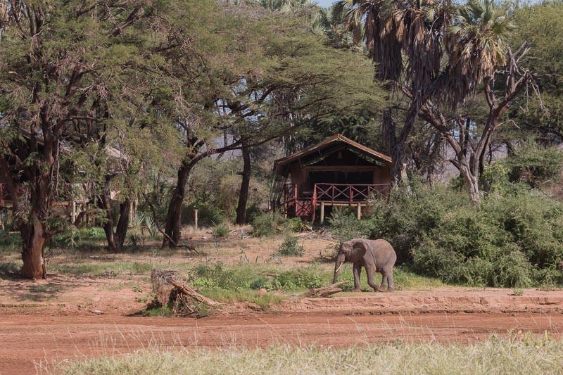 Kenia 2017-0016